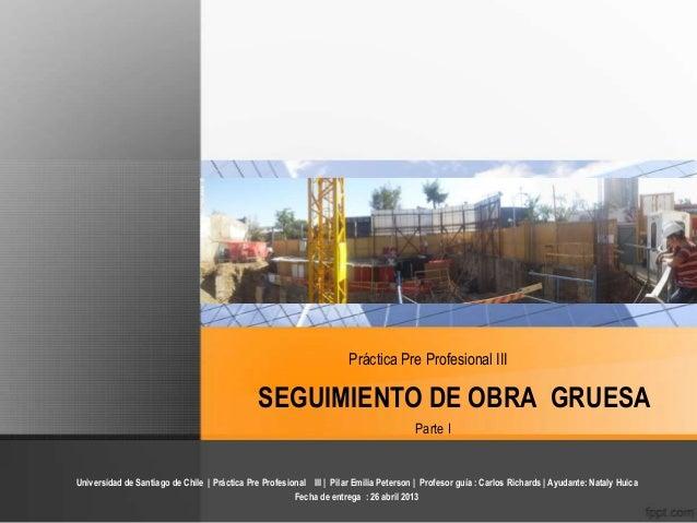 Práctica Pre Profesional IIIUniversidad de Santiago de Chile | Práctica Pre Profesional III | Pilar Emilia Peterson | Prof...
