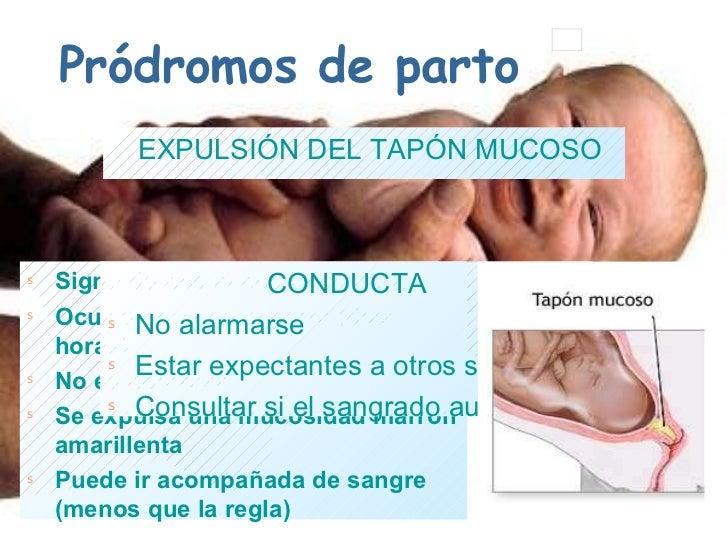 c27e744ee Segunda Clase Bienestar Fetal Canastillo Y Prodromos. Save. Expulsion Del Tapon  Mucoso En El Embarazo