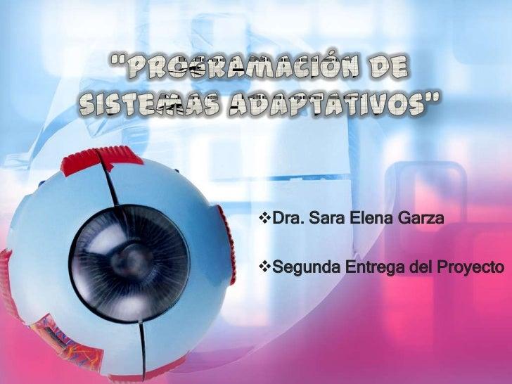 Dra. Sara Elena GarzaSegunda Entrega del Proyecto