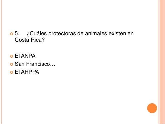   5. ¿Cuáles protectoras de animales existen en Costa Rica?  El ANPA  San Francisco…  El AHPPA 