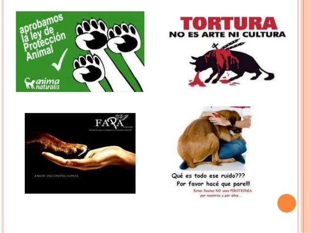 BIBLIOGRAFÍA   http://www.google.com/search?hl=es&gs_rn=11&gs _ri=psyab&suggest=p&pq=cuales+protectoras+de+animal es+exis...