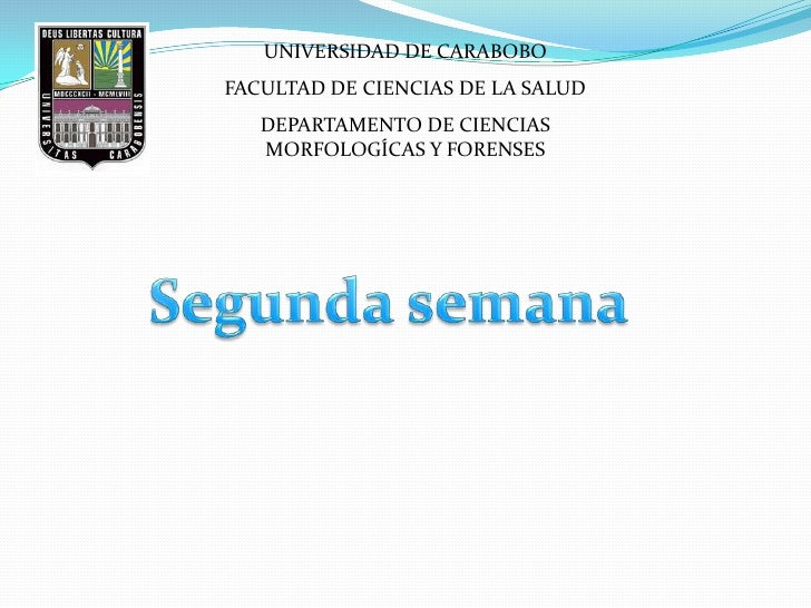 UNIVERSIDAD DE CARABOBOFACULTAD DE CIENCIAS DE LA SALUD   DEPARTAMENTO DE CIENCIAS   MORFOLOGÍCAS Y FORENSES