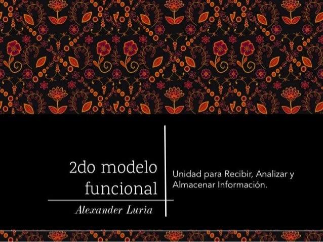 Segundo modelo funcional de Luria