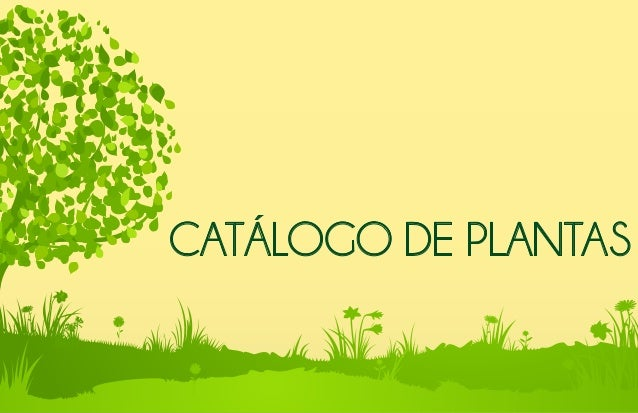 Cat logo de plantas for Catalogo de flores de jardin