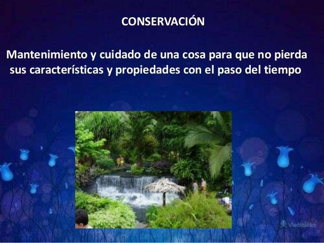 Técnica Conservación Y Cuidado De La Naturaleza Marla Michell