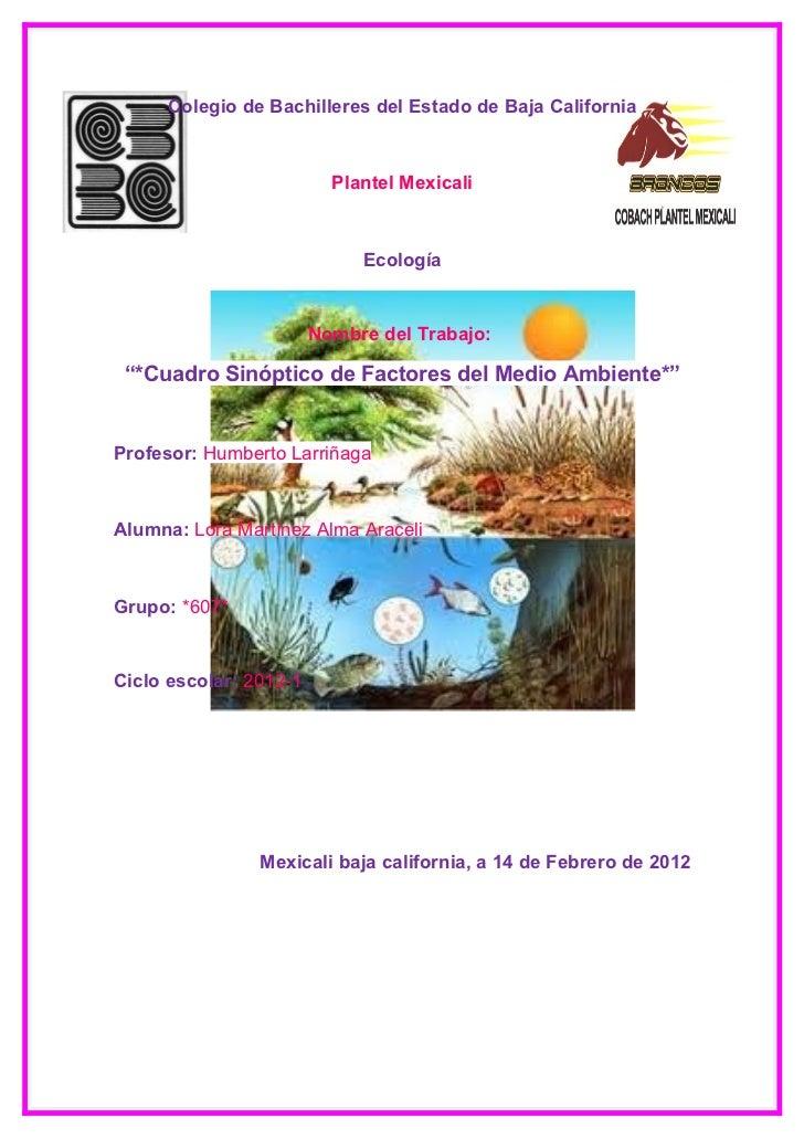 Segundo trabajo de ecologia factores bioticos y abioticos