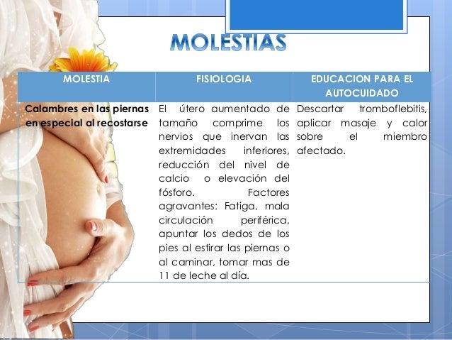 207b42512 Segundo trimestre de embarazo