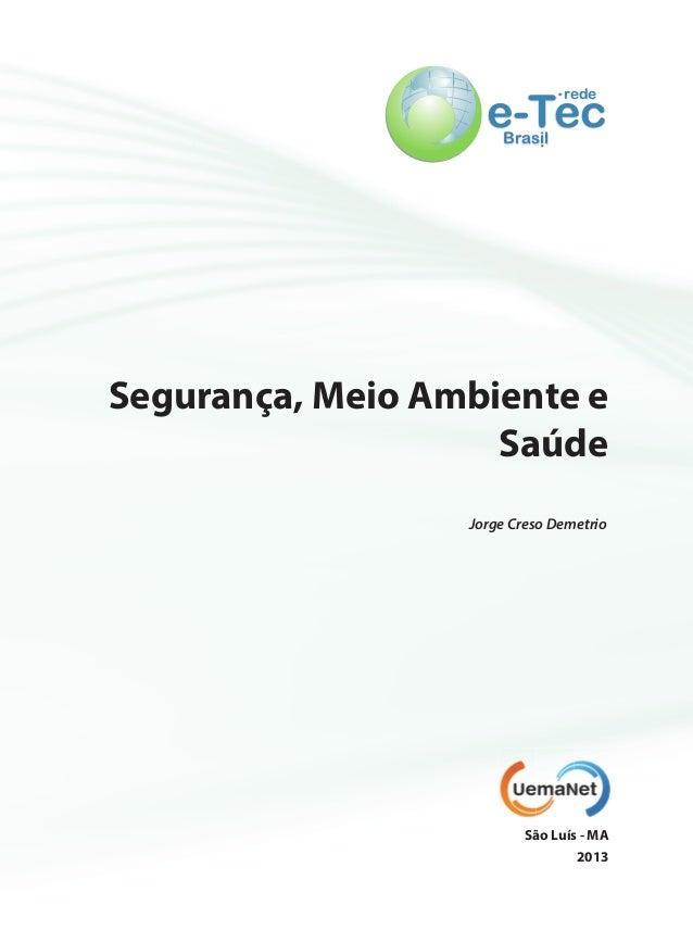 e-Te.redce  Bras.il  Segurança, Meio Ambiente e  Saúde  Jorge Creso Demetrio  São Luís - MA  2013