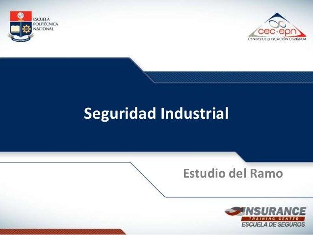 Seguridad Industrial  Estudio del Ramo
