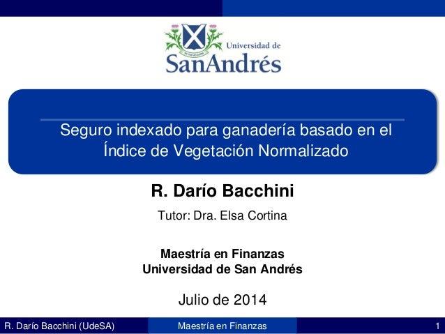 R. Darío Bacchini (UdeSA) 1Maestría en Finanzas Seguro indexado para ganadería basado en el Índice de Vegetación Normaliza...