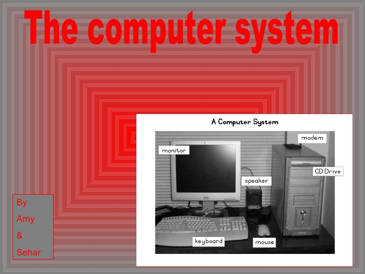 The computer system By Amy  & Sehar
