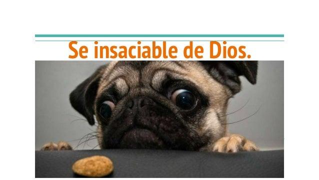 Se insaciable de Dios.