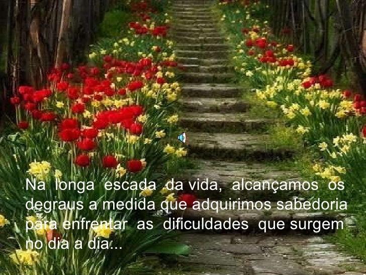 Na  longa  escada  da vida,  alcançamos  os degraus a medida que adquirimos sabedoria para enfrentar  as  dificuldades  qu...