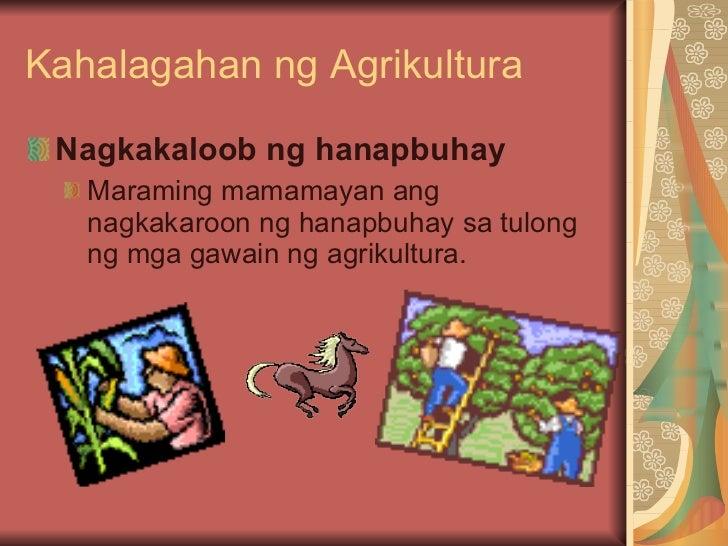 agrikultura ng pilipinas Ang pilipinas ay mayaman sa mga ngunit mawawalan ng saysay ang pagpapaunlad ng industriya kung patuloy ang pagbagsak ng agrikultura sapagkat dito.