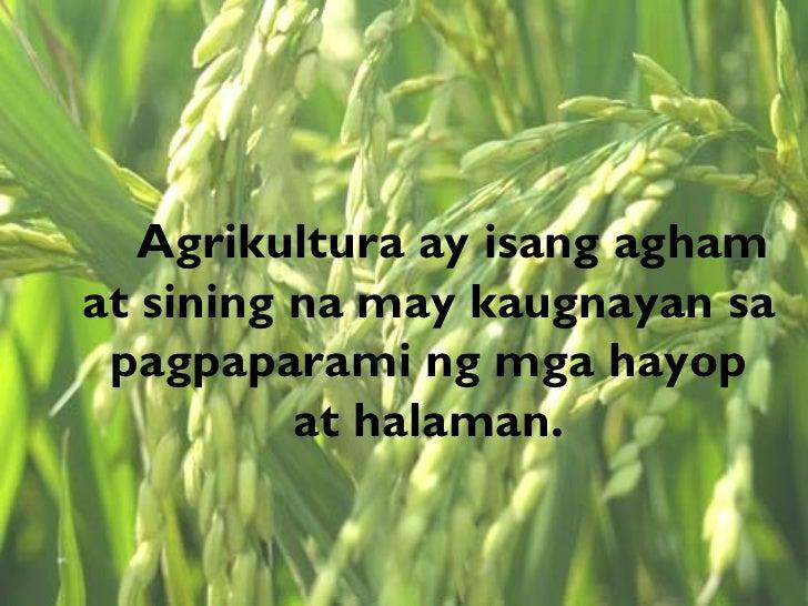 suliranin ng agrikultura Matukoy ang mga gawain sa sektor ng agrikultura at ang mga  malaman ang  solusyon sa bawat suliranin ng sektor ng agrikultura.