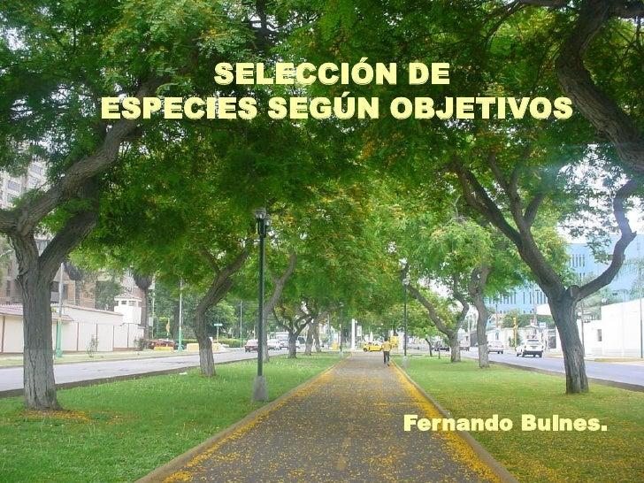 SELECCIÓN DEESPECIES SEGÚN OBJETIVOS               Fernando Bulnes.