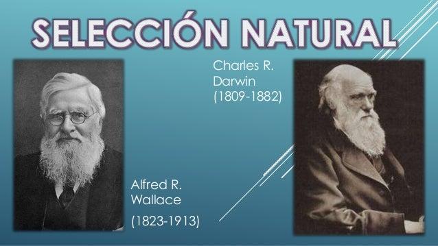 Alfred R.  Wallace  (1823-1913)  Charles R.  Darwin  (1809-1882)