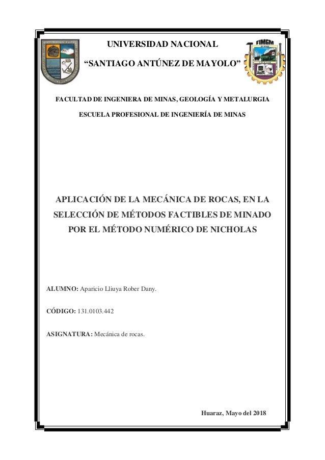 """UNIVERSIDAD NACIONAL """"SANTIAGO ANTÚNEZ DE MAYOLO"""" FACULTAD DE INGENIERA DE MINAS, GEOLOGÍA Y METALURGIA ESCUELA PROFESIONA..."""