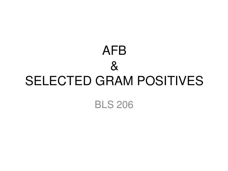 AFB &SELECTED GRAM POSITIVES<br />BLS 206<br />