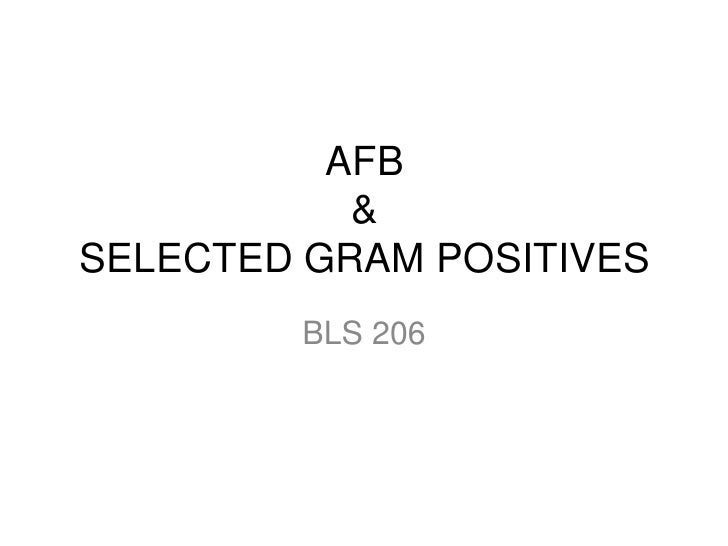 AFB           &SELECTED GRAM POSITIVES        BLS 206