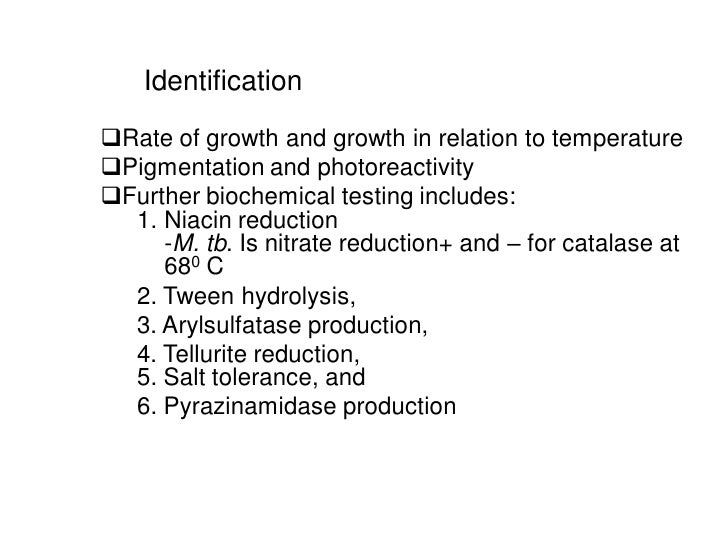 IdentificationRate of growth and growth in relation to temperaturePigmentation and photoreactivityFurther biochemical t...