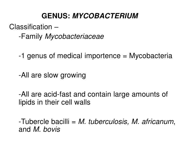 GENUS: MYCOBACTERIUMClassification –   -Family Mycobacteriaceae  -1 genus of medical importence = Mycobacteria  -All are s...