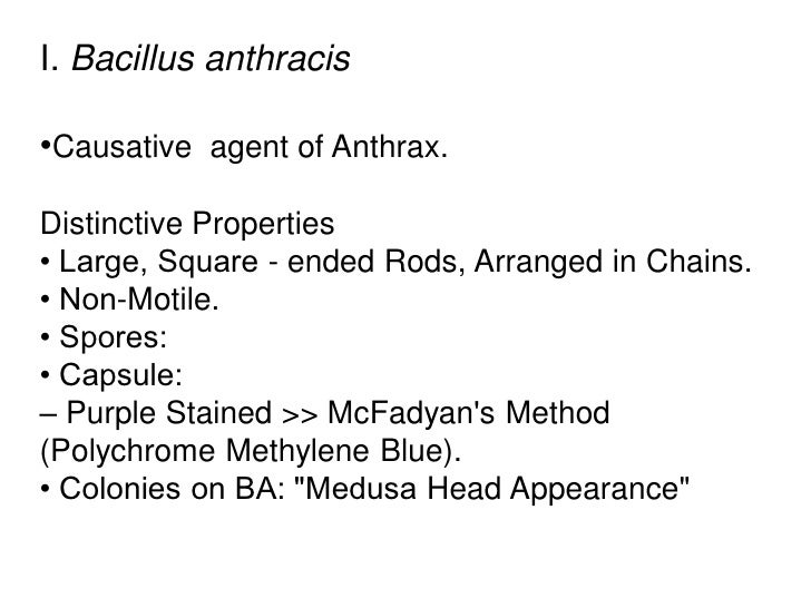 I. Bacillus anthracis•Causative agent of Anthrax.Distinctive Properties• Large, Square - ended Rods, Arranged in Chains.• ...