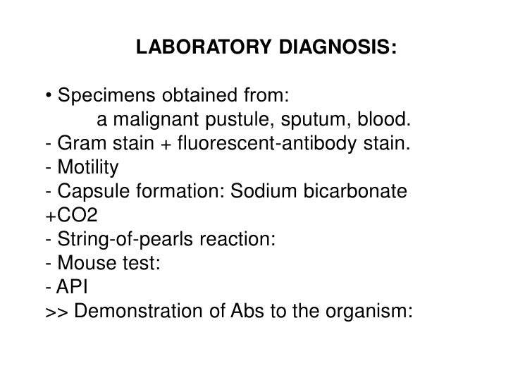 LABORATORY DIAGNOSIS:• Specimens obtained from:       a malignant pustule, sputum, blood.- Gram stain + fluorescent-antibo...