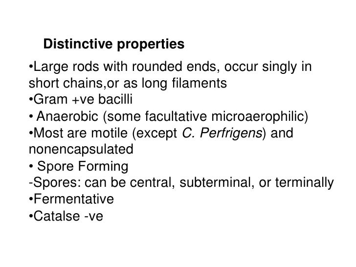 Distinctive properties•Large rods with rounded ends, occur singly inshort chains,or as long filaments•Gram +ve bacilli• An...