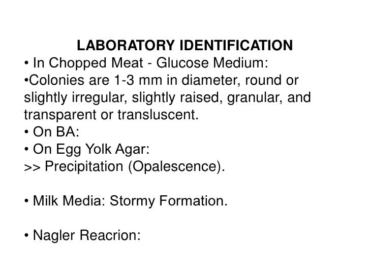 LABORATORY IDENTIFICATION• In Chopped Meat - Glucose Medium:•Colonies are 1-3 mm in diameter, round orslightly irregular, ...