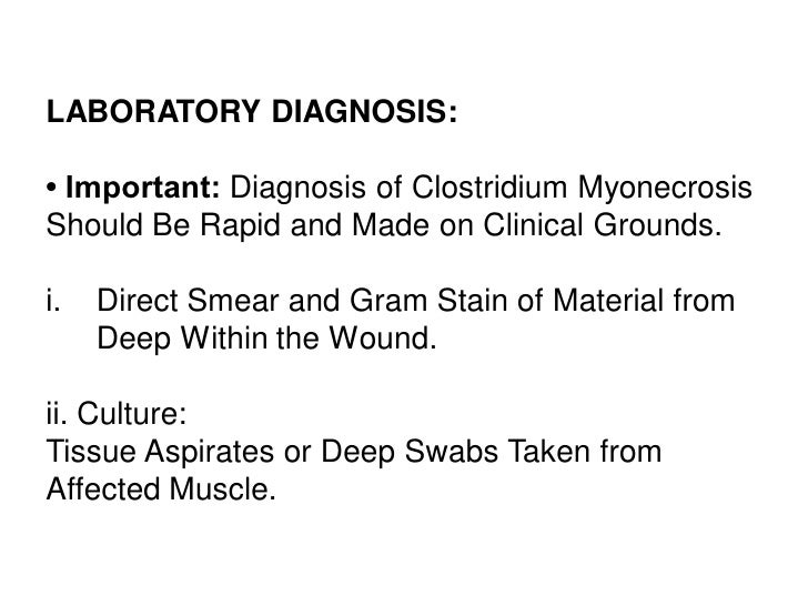 LABORATORY DIAGNOSIS:• Important: Diagnosis of Clostridium MyonecrosisShould Be Rapid and Made on Clinical Grounds.i.   Di...