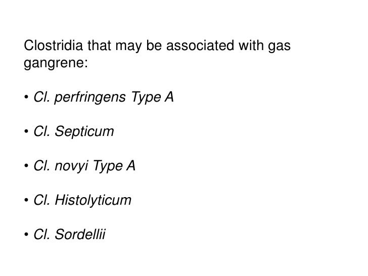 Clostridia that may be associated with gasgangrene:• Cl. perfringens Type A• Cl. Septicum• Cl. novyi Type A• Cl. Histolyti...
