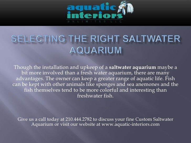 Though the installation and upkeep of a saltwater aquarium maybe a    bit more involved than a fresh water aquarium, there...