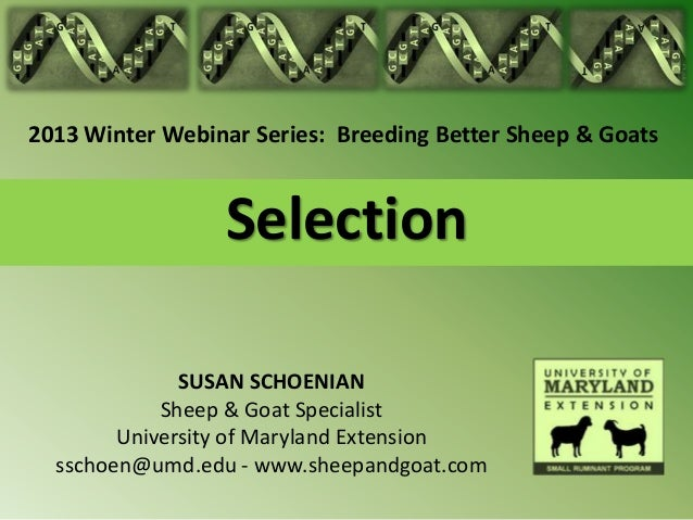 2013 Winter Webinar Series: Breeding Better Sheep & Goats                 Selection              SUSAN SCHOENIAN          ...