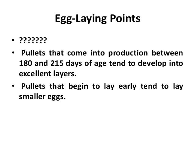 • Inexpensive, low quality layer rations often lead to poor egg production. Feed a good, well-balanced layer ration. • Hen...