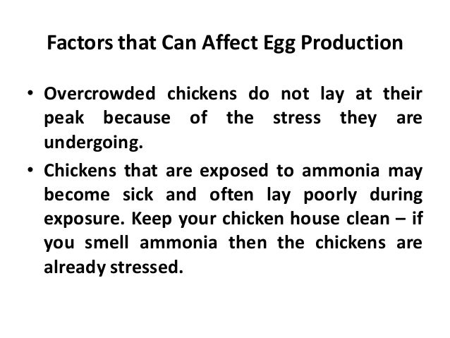 • By focusing on healthy fowl in production around the beginning of March, the techniques revealed the better layers with ...