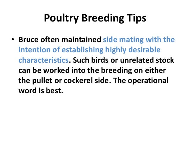 • Selection of fowl with long, productive lives will develop strains with low mortality and vigorous constitutions, always...