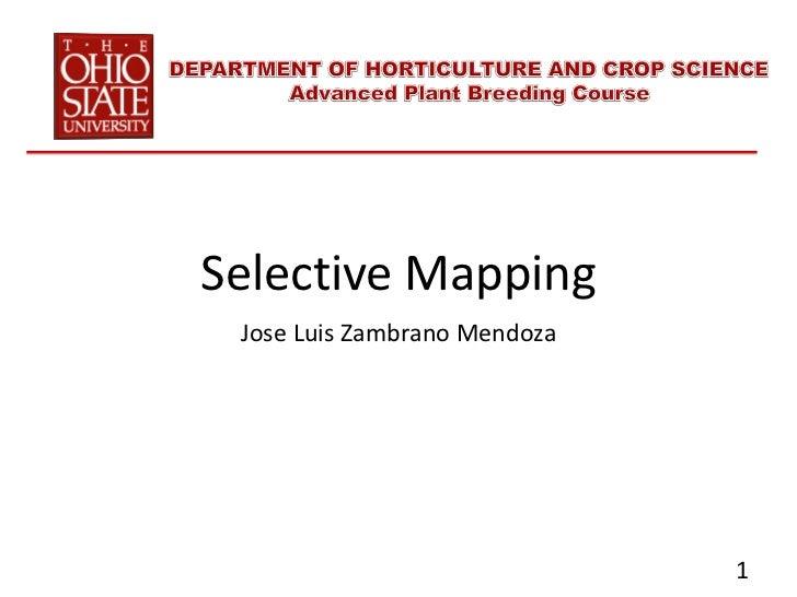 Selective Mapping Jose Luis Zambrano Mendoza                              1