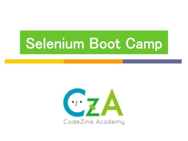 Selenium Boot Camp