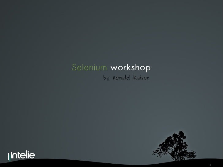 Selenium   workshop by Ronald Kaiser