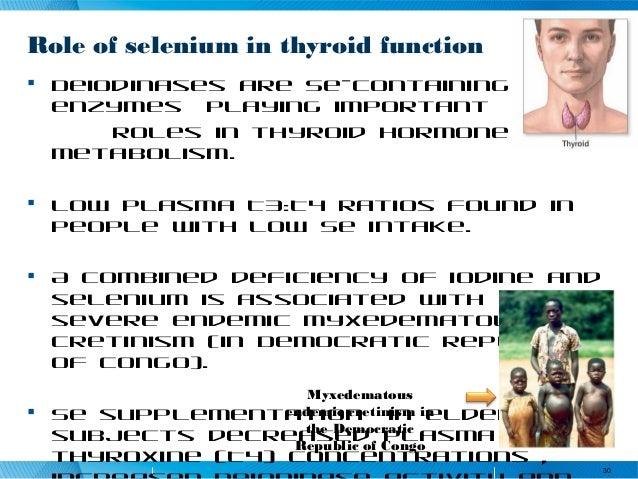 essay on iodine deficiency in democratic republic of congo