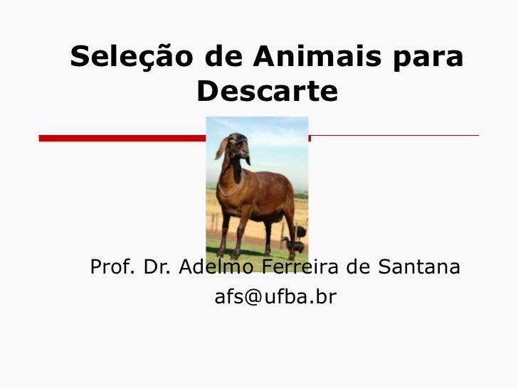 Seleção de Animais para Descarte Prof.  Dr.  Adelmo Ferreira de Santana [email_address]