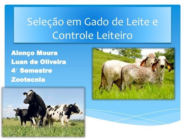 Alonço Moura Luan de Oliveira 4° Semestre Zootecnia Bom diaSeleção em Gado de Leite e Controle Leiteiro