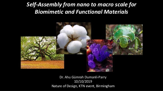 Self-Assembly from nano to macro scale for Biomimetic and Functional Materials Dr. Ahu Gümrah Dumanli-Parry 10/10/2019 Nat...