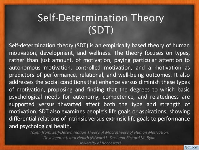 social determination theory and motivation in sport The motivational pull of video games: a self-determination theory  differences in motivation for sport and exercise and  of intrinsic motivation, social.