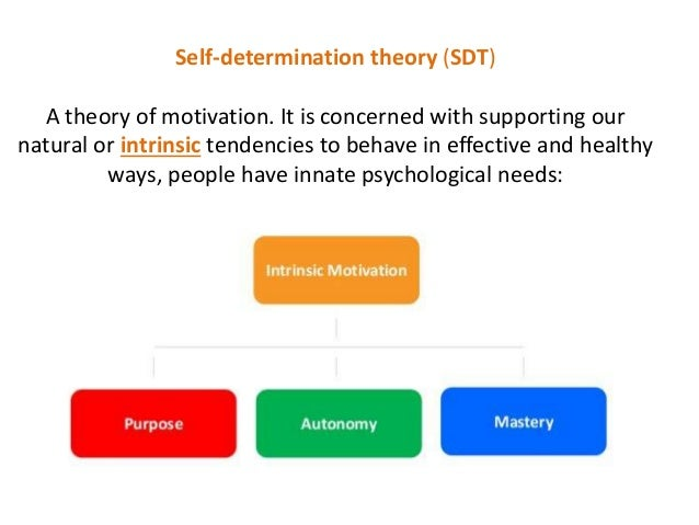 self determination theory and career Cognitive career theory effectively, then self-determination theory's influence over career-decision making, and student's career aspirations and career choices.