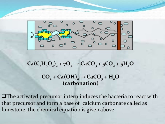 self healing bacterial concrete pdf