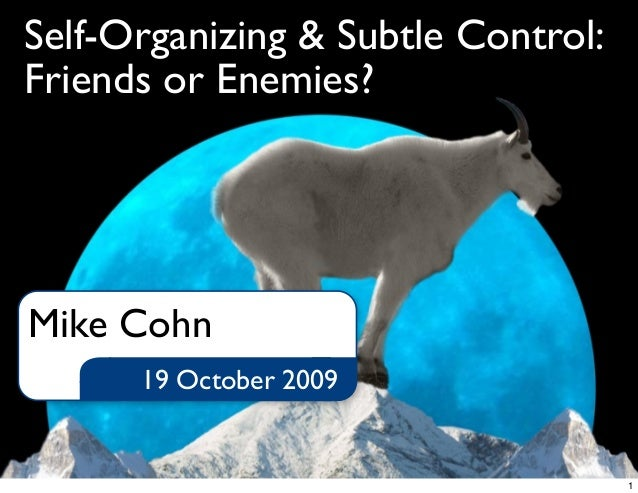 Self-Organizing & Subtle Control:Friends or Enemies?19 October 2009Mike Cohn1
