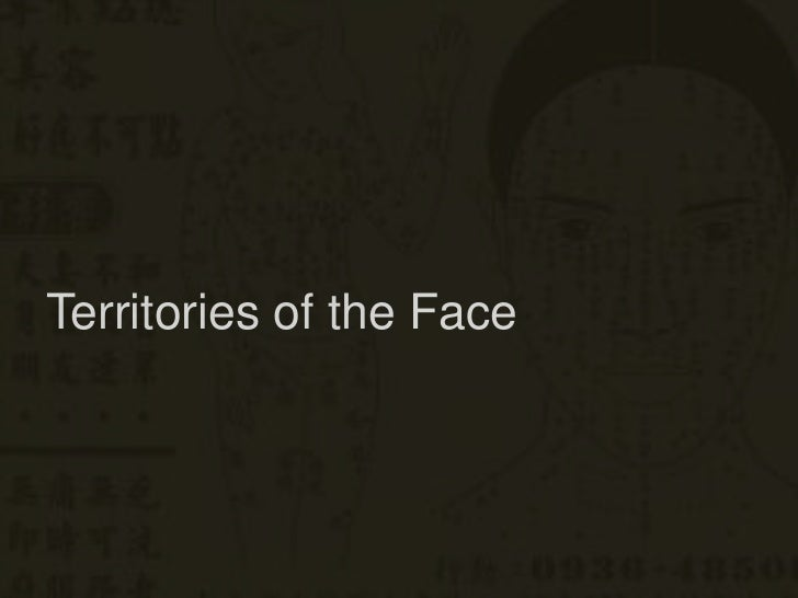 Territories of the Face <br />