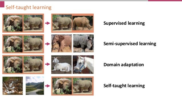 Self-taught learning Supervised learning Semi-supervised learning Domain adaptation Self-taught learning